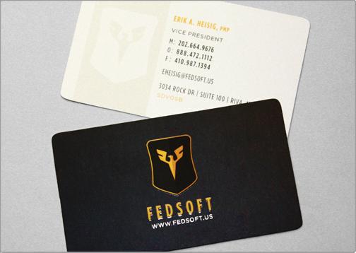 Fedsoft business card design design critique colourmoves